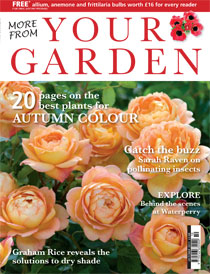 News redesign more from your garden inpublishing for Redesign your garden